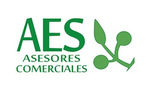 Aes-Asesores