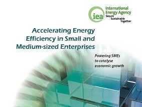 Accelerating Energy Efficiency in SME